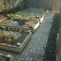 Raised Vegetable Beds - Seavington.JPG
